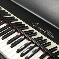 Fender Rhodes Mirror Name Rail